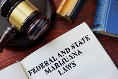 New Jersey Marijuana Possession & Distribution Crimes